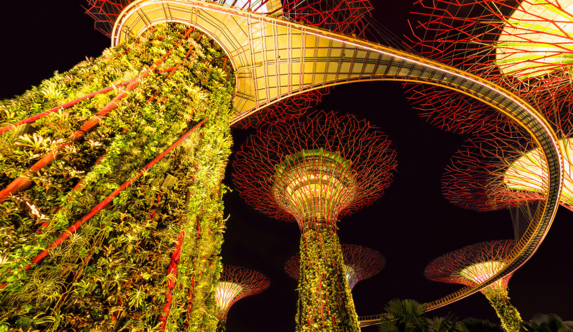 Singapore: City Alight with Green Thinking