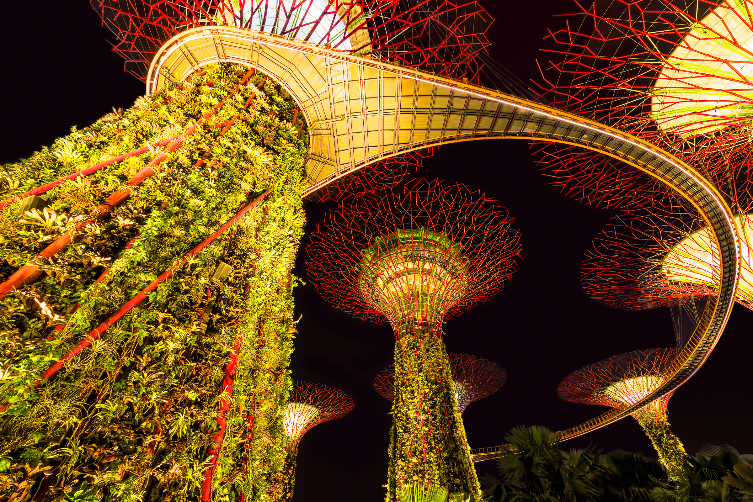 The Supertrees